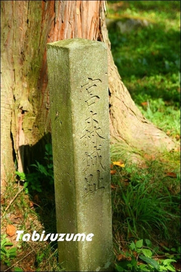 miyamori2001-thumbnail2.jpg